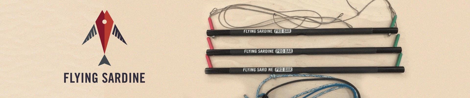 Banner Fly Sardine - Home FKSS 2020